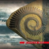 Primitive Cool / Primitive Cool